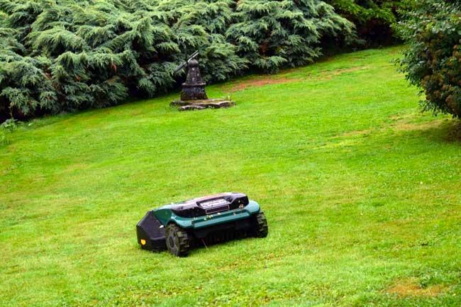 robot tagliaerba