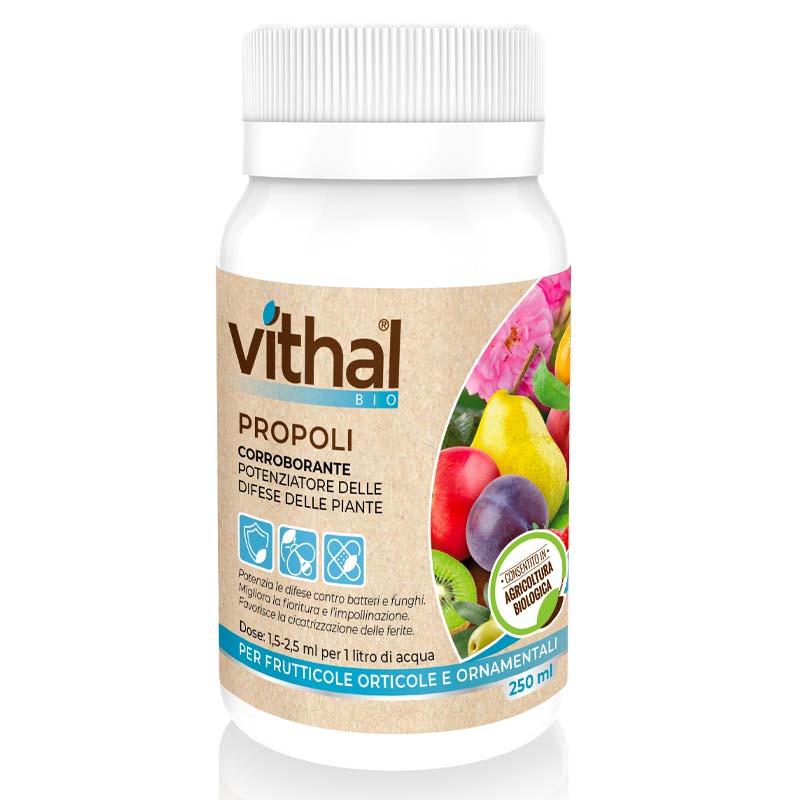 Propoli Vithal Bio Ital-Agro